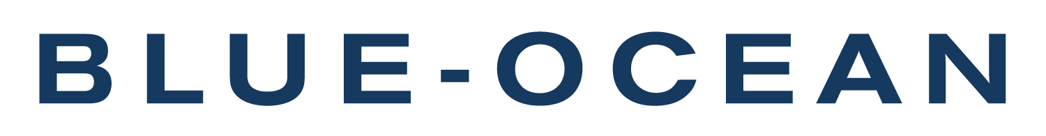 CBO Blue-Ocean Strategie Logo
